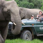 Eco-tourism helps to reverse rural exodus in South Africa