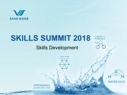 SKILLS SUMMIT - SKILLS DEVELOPMENT PRESENTATION - 2018 (3).pdf